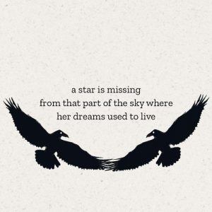 a star is missing haiku