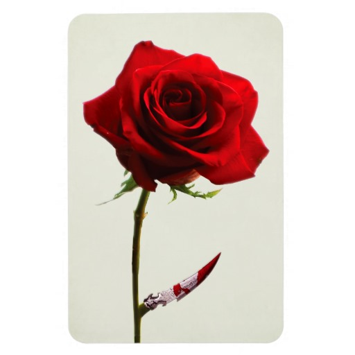 red_rose_with_blood_stained_thorns_premium_magnet-r05238ce56822417a834b7a8fa8e85d11_am0uf_8byvr_512